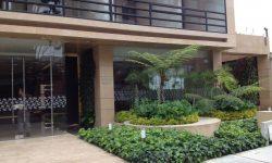 diseño-de-jardines-jardinesurbanos-mint-1024x768