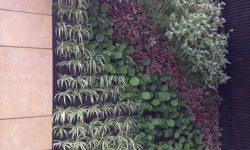 jardines-urbanos17-768x1024